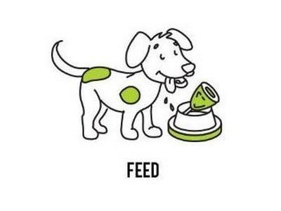 Raw dog food diet delivered in Sydney